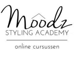 Moodz styling academy